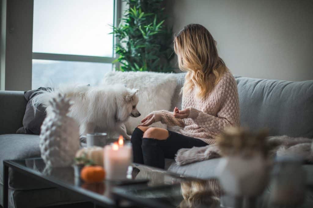 Mulher branca e loira sentada no sofá com cachorro branco.