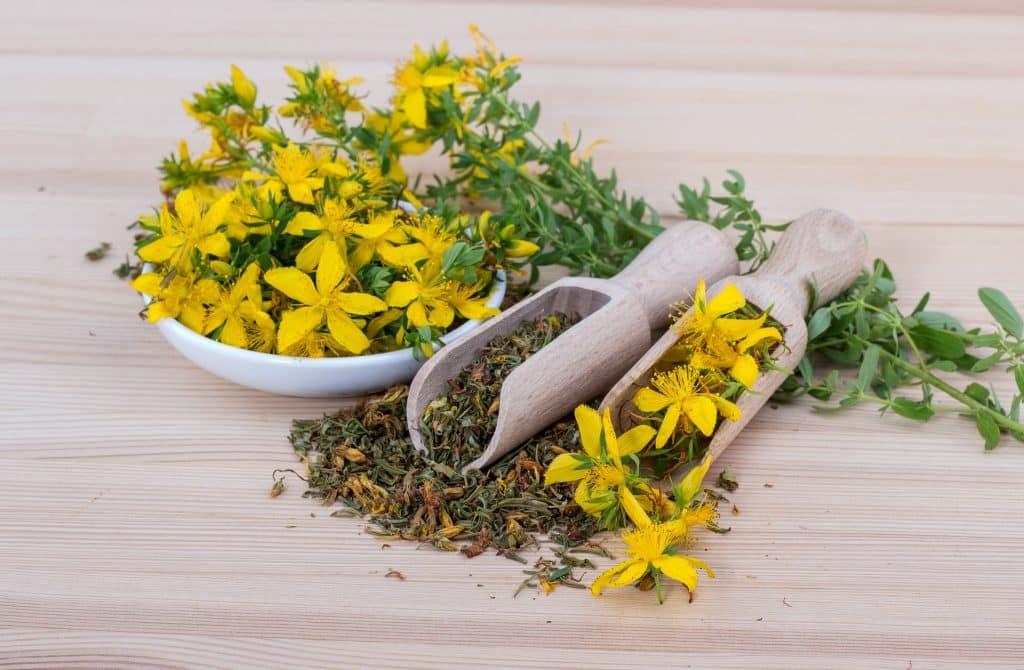 Imagem de ervas aromáticas dispostas sobre uma tigela branca e duas colheres de madeira.