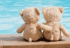 Dois ursos de pelúcia se abraçando de frente pra água