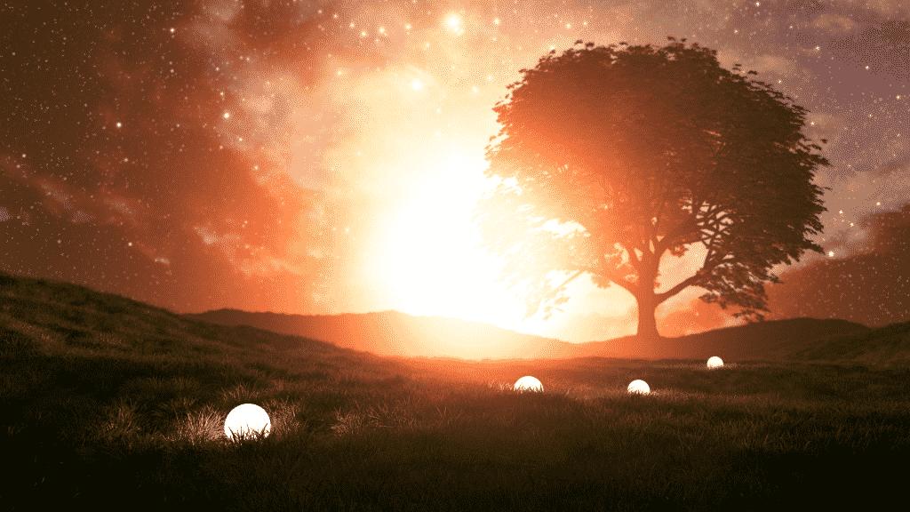 Foto de campo com uma árvore grande e um céu estrelado.