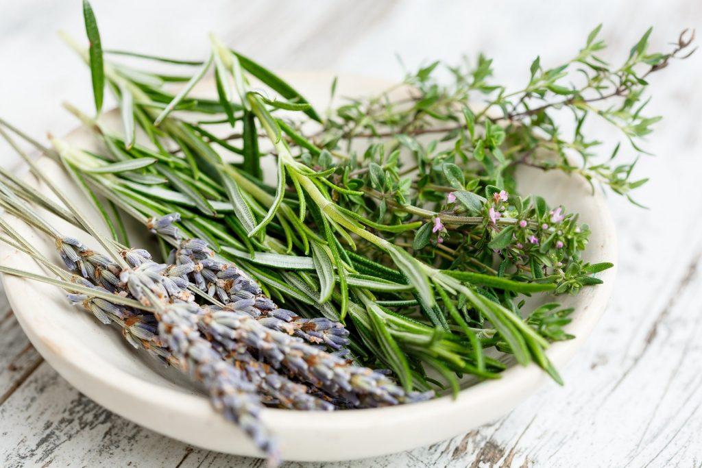 Imagem de um vaso de cerâmica pintado na cor branca e dentro dele várias ervas e em destaque o alecrim que será usado para o preparo de um banho.