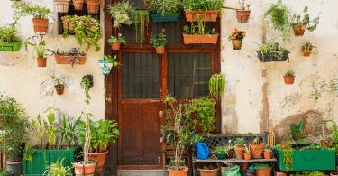 Fachada de casa com muitas plantas