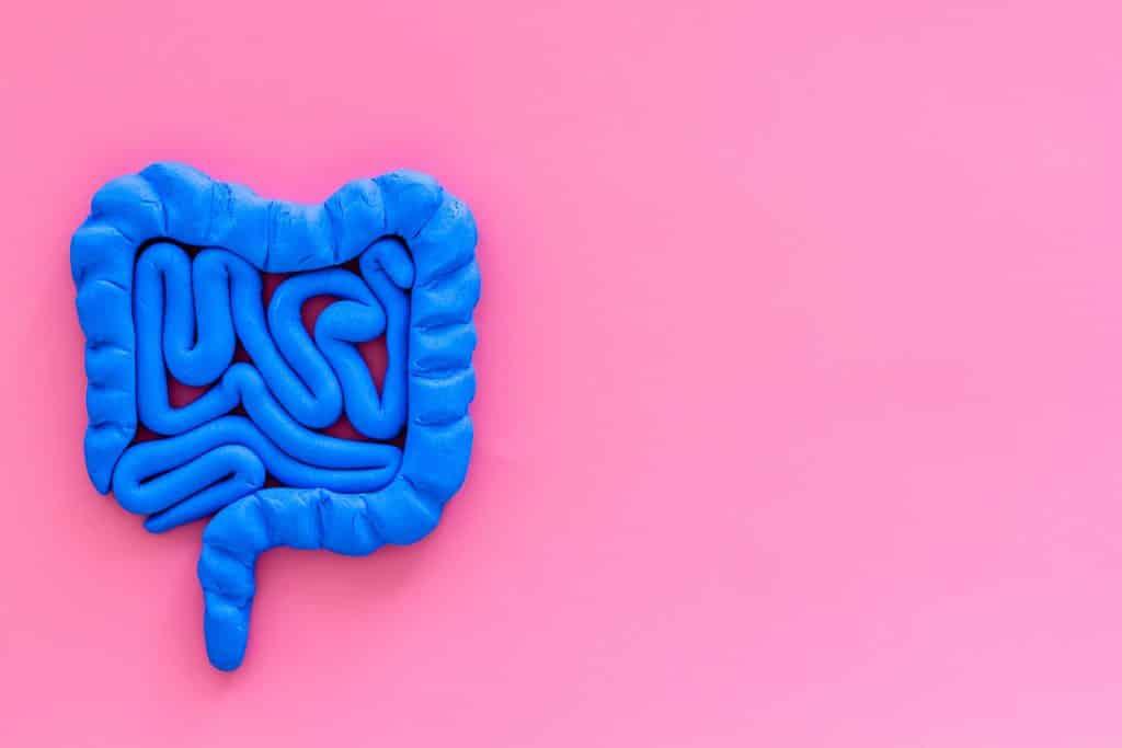 Representação de intestino sobre fundo rosa.