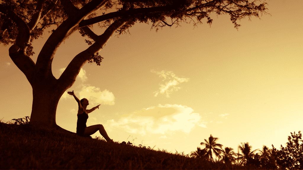 Mulher contente sentada debaixo de uma árvore