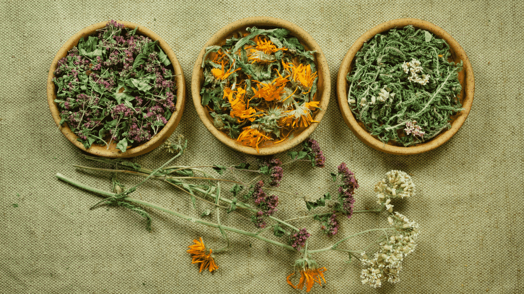 Potes com ervas em uma mesa