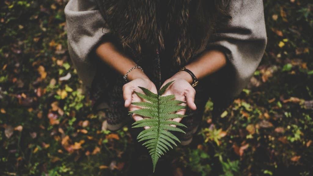 Pessoa agachada em floresta. Ela está com as mãos abertas e, sobre elas, há uma folha.