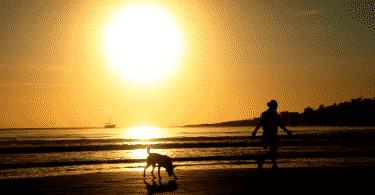 Silhueta de homem e cachorro correndo na praia durante o por do sol