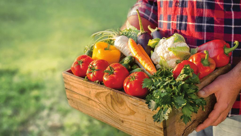 Homem segurando uma cesta com diversos legumes, verduras e frutas.