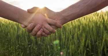 Duas pessoas apertam as mãos. Ao fundo, há grama.