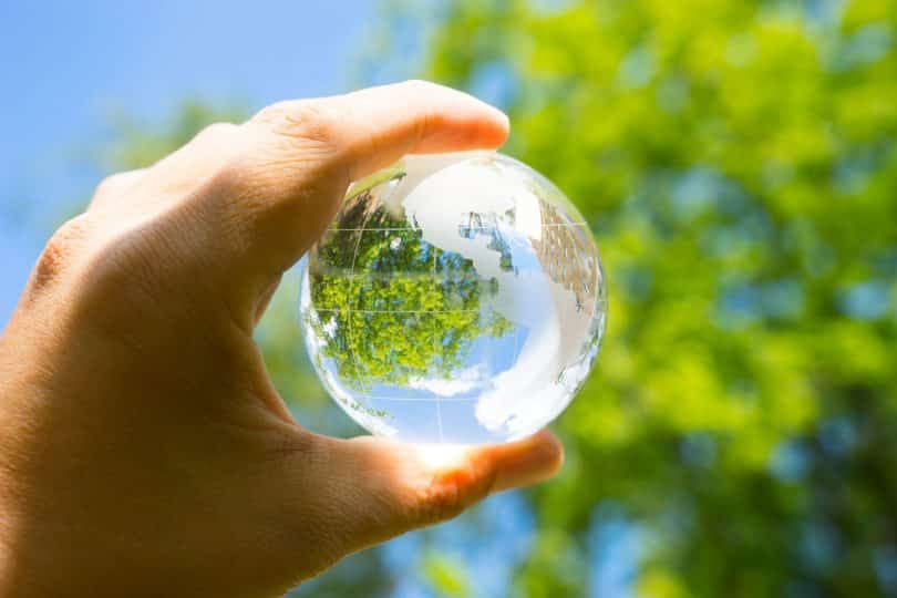 Mão branca segurando globo transparente em frente a árvores.