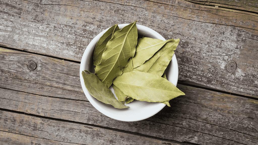 Imagem de um recipiente com folhas de louro
