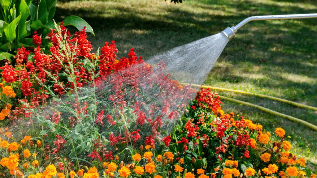 Jato de água molhando plantas em um jardim