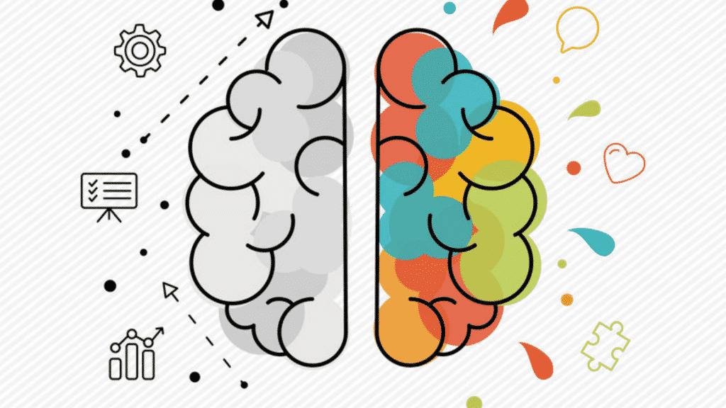 Cérebro dividido ao meio. Uma parte está em preto e branco e a outra está colorida
