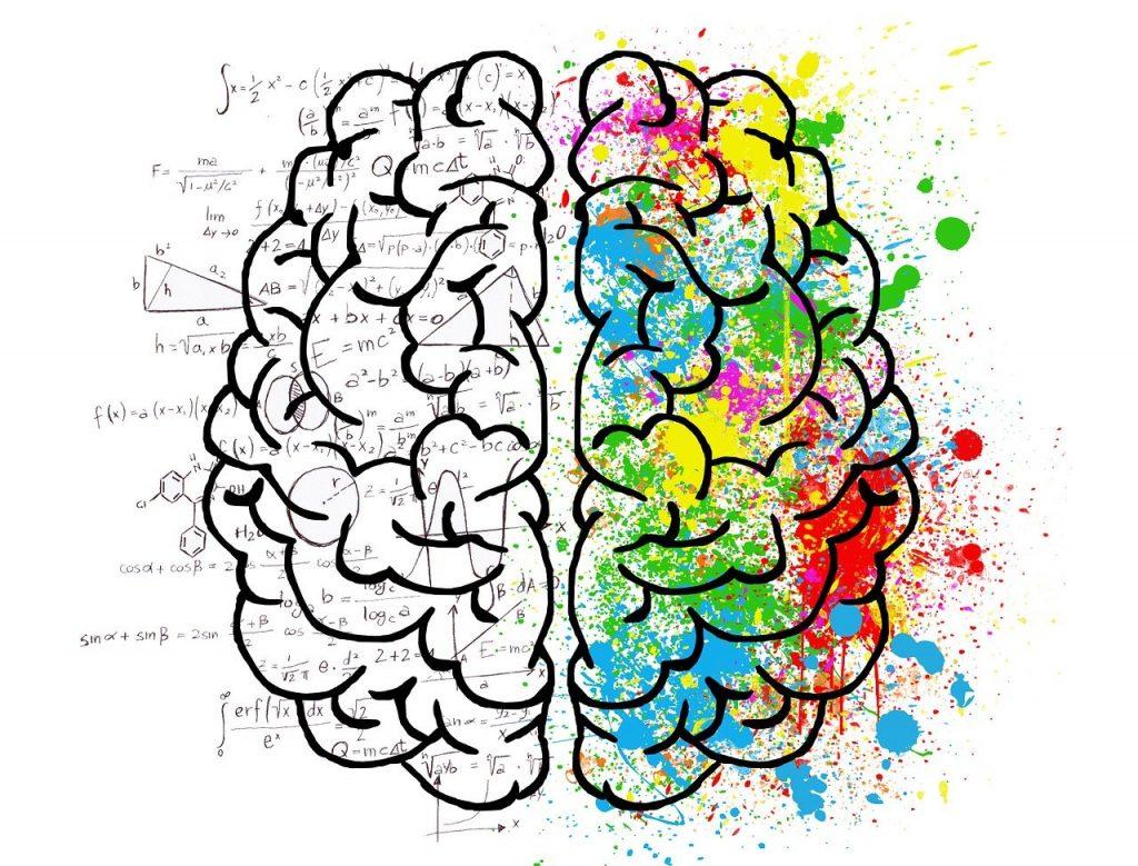 Ilustração de um cérebro, sendo o lado esquerdo representado pelo lado exato e direito representado pelo lado criativo