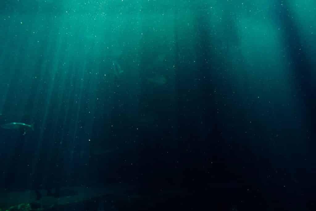 Imagem subaquática