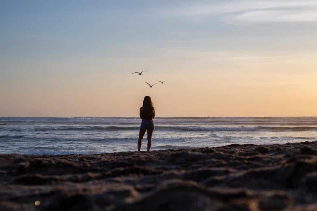 Silhueta de uma mulher em frente ao mar olhando os pássaros voarem.