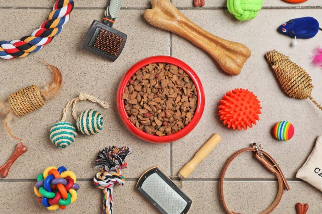 Tigela com comida para gato ou cão e acessórios no chão.