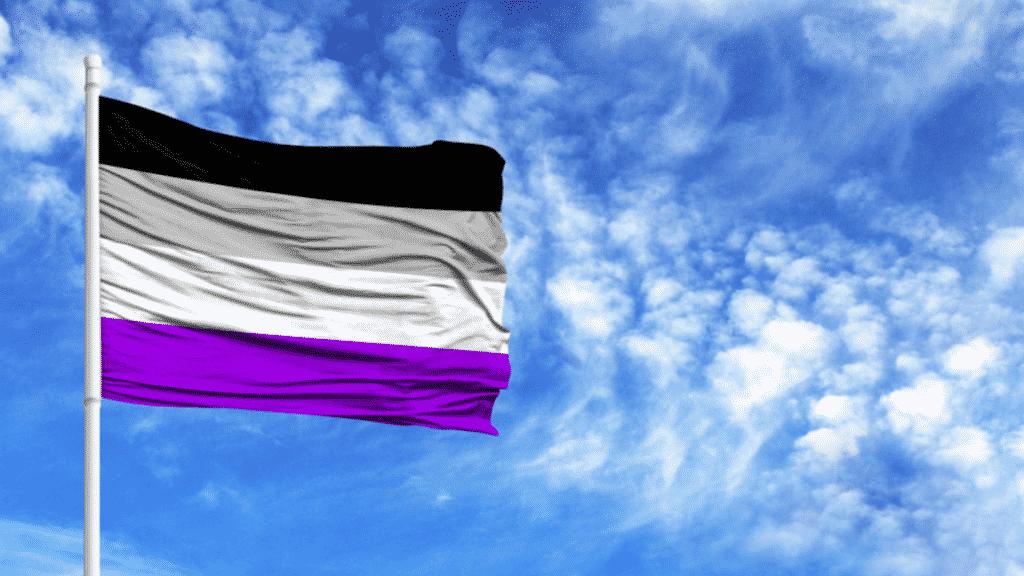 Bandeira que representa a assexualidade