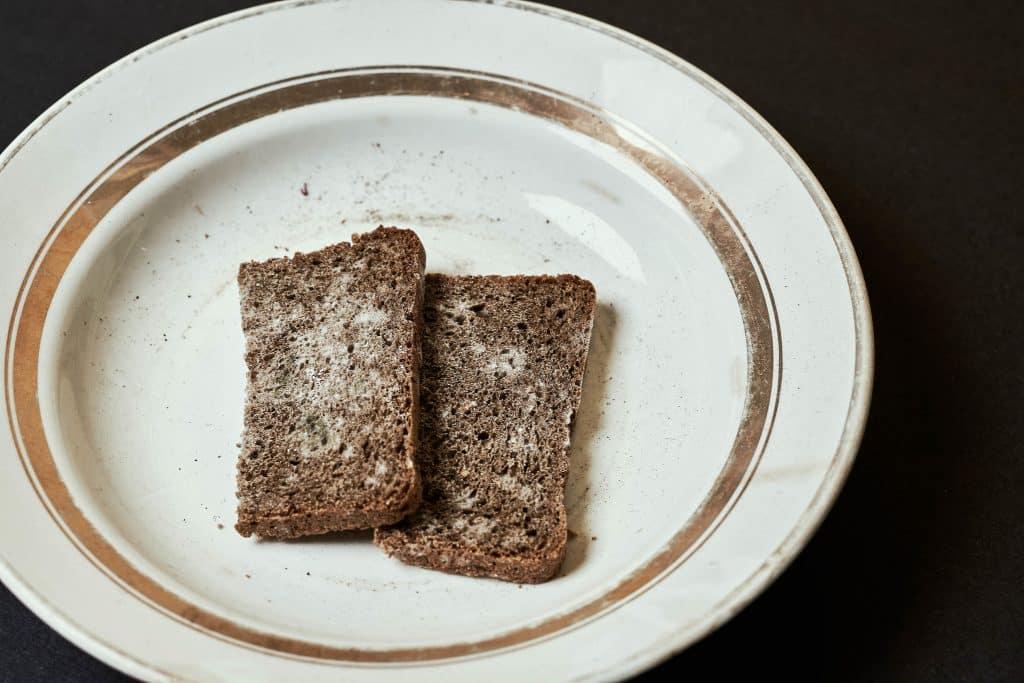 Duas fatias de pão mofadas.