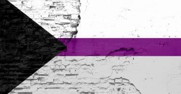 Bandeira semissexual pintada em uma velha parede de tijolos