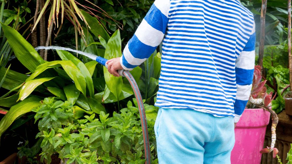 Criança regando plantas do jardim